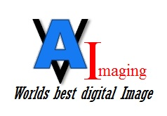All Vet Imaging, LLC